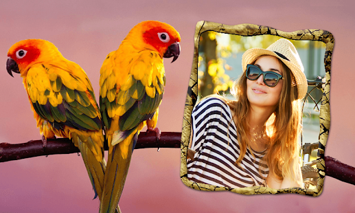 Birds Photo Frames- screenshot thumbnail