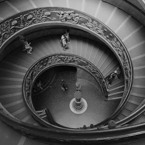 Two paths, one staircase! by Miguel Silva - Buildings & Architecture Bridges & Suspended Structures ( paths, rome, staircase, helix, miguel silva, musuem, architecture, vatican, italy, city )