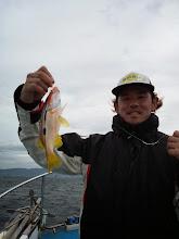 Photo: ありゃ。 ヨシダさんはヨコスジフエダイの小サイズ。