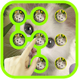 Cute Cat Pattern Lock apk