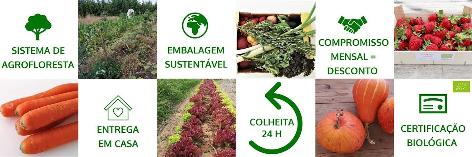 Cabazes Bio ao Domicílio - LISBOA 2020