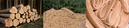 madeira, cavaco e papelão