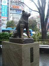 Photo: Hachi. If you don't know the story, watch this movie. One of the saddest movies I've ever seen.. http://www.imdb.com/title/tt1028532/?ref_=sr_1