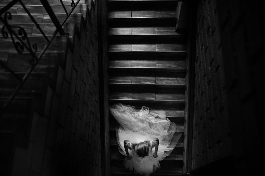 Wedding photographer Igor Shevchenko (Wedlifer). Photo of 28.01.2019