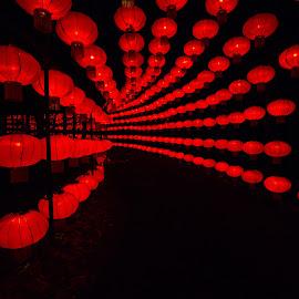 Lantern Festival 2 by Harvey Lindenbaum - City,  Street & Park  Night ( chinese lantern festival, night )