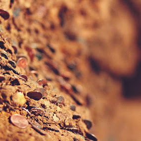 by Kyle Archerd - Nature Up Close Rock & Stone