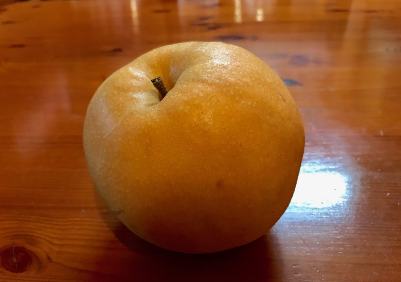 Shimanto Pear