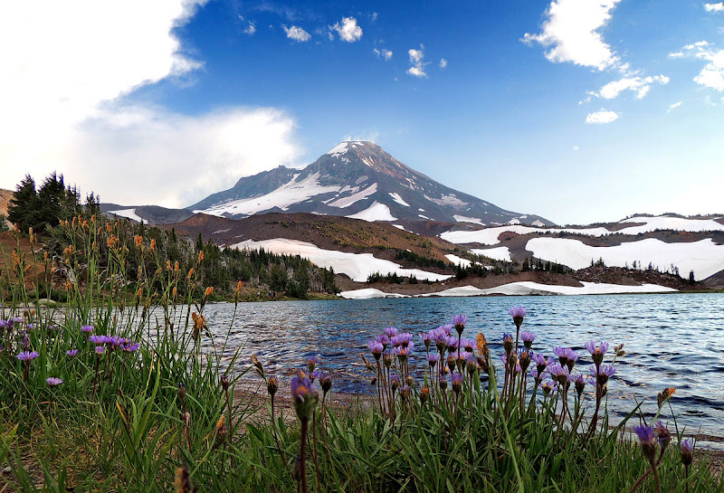 Photo: South Sister from Camp Lake
