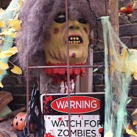 Watch for Zombies by Joe Harris - Public Holidays Halloween ( halloween zombies skulls warning )