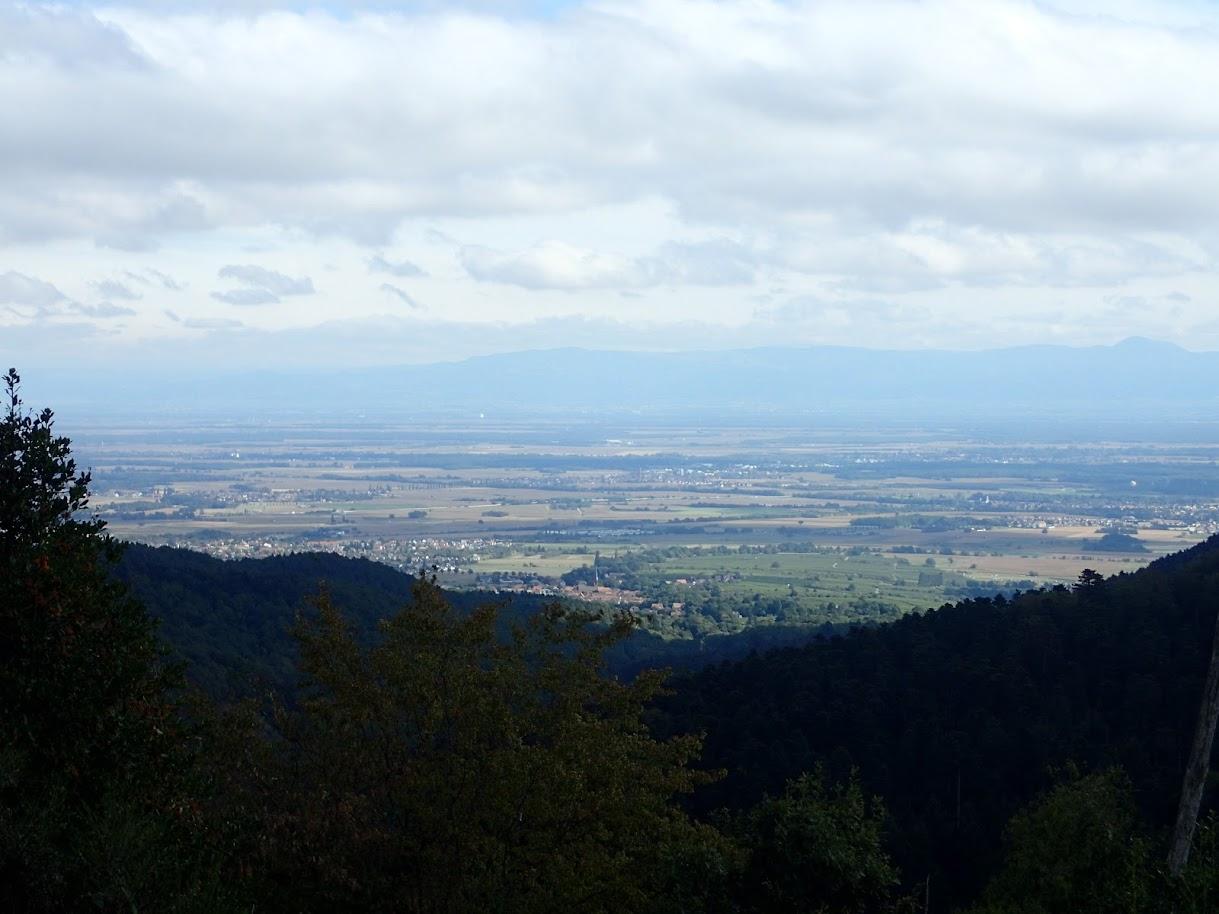 Voici la plaine d'Alsace et la Forêt Noire en face
