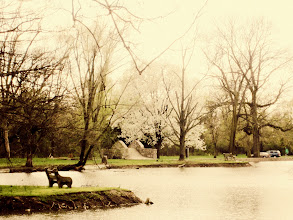 Photo: Rose-colored photo of a pond, bench, stone bridge, and a blossoming pear tree at Eastwood Park in Dayton, Ohio.
