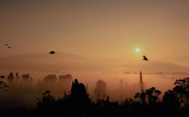 Una mattina... di maurilu