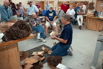 Photo: Members look on as Alan Hollar literally disassembles a burl and talks about how to use the various pieces.