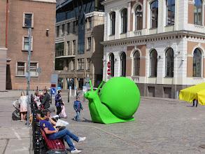 Photo: A big, green snail