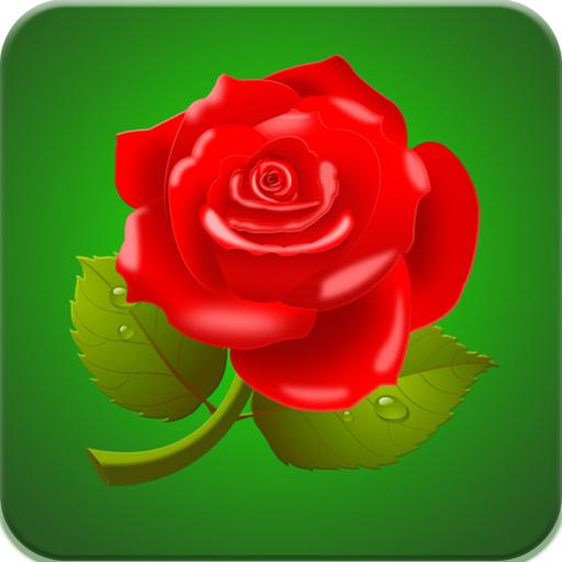 Rose Wallpaper HD (app)