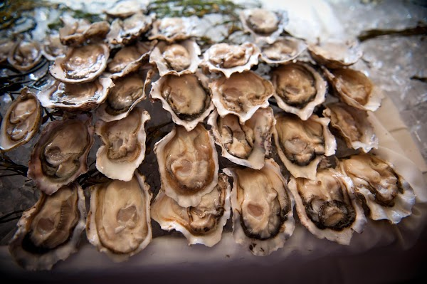 Bivalve Of The Month @ Grand Central Oyster Bar Recipe