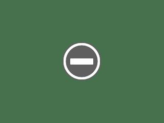 węże na ludzkich dłoniach