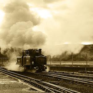 DSC05257 002 first train.jpg