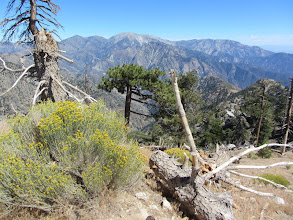 Photo: View east toward Mt. Baldy from South Mt. Hawkins