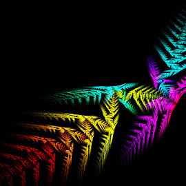 Fern by Irina Stoica - Illustration Abstract & Patterns ( fractal, photoshop,  )