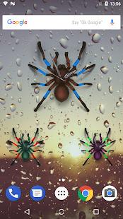 Spider Analog Clock - náhled