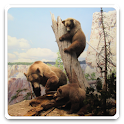 Jigsaw Puzzle: Animals