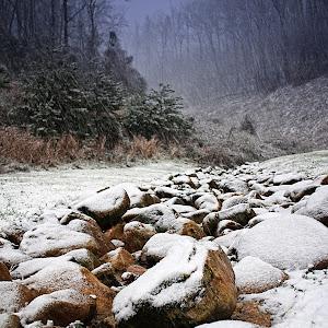 Snowy Beginnings.jpg