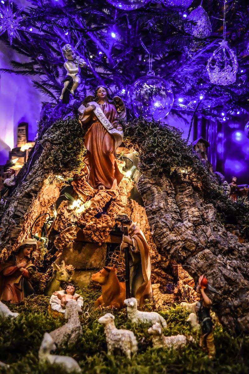 Albero e Presepe... per un Natale Perfetto! di Didi - Diana Gabrielli