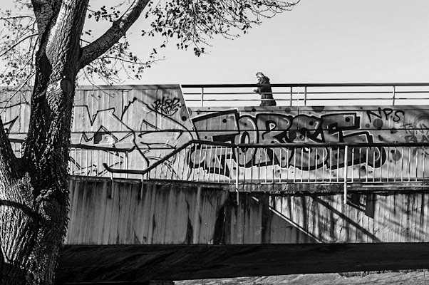 il ponte del forse di TS_73