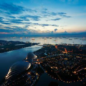 Skypark by Emil Gonzales - Landscapes Travel ( marina bay sands, marina bay, singapore )