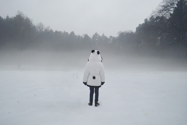 il panda nella nebbia  di Phuckoff