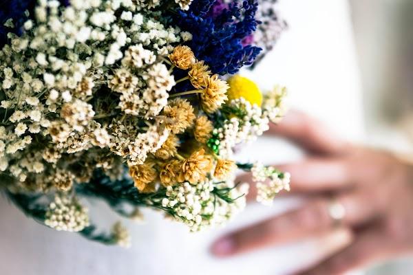 Fotógrafo de bodas raul crego (raulcrego). Foto del 04.02.2016
