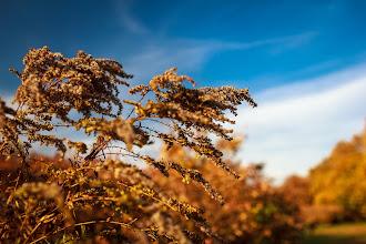 Photo: Autumn colors  #autumn  #colors  #orange  #blue