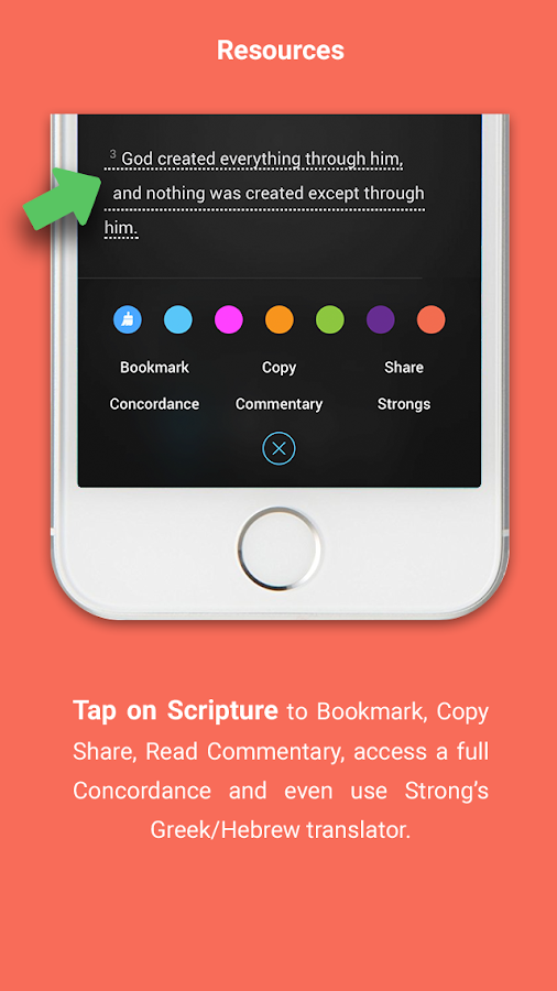 Read the Bible in a Year! - Bible Study Tools
