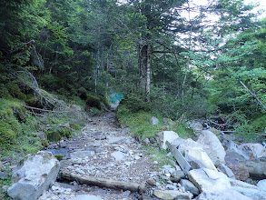 ここから本格的な登山道に