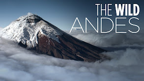 The Wild Andes thumbnail