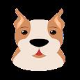 애완동물 커뮤니티