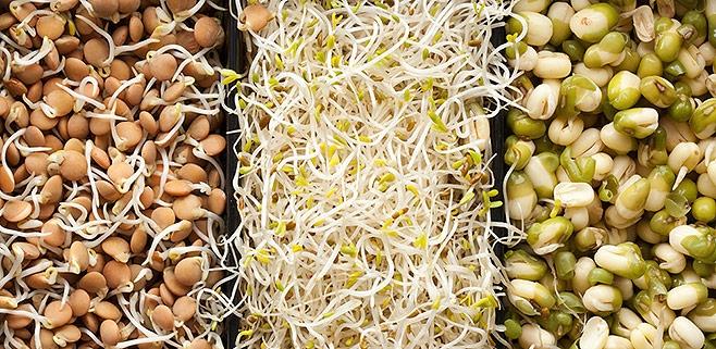 syroedenie-s-chego-nachat