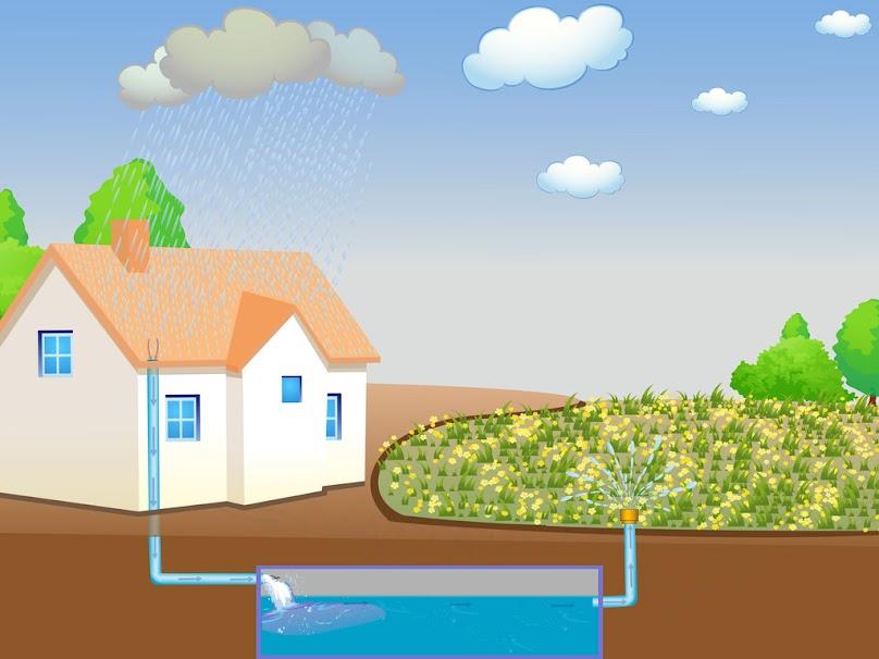 Automatyczne nawadnianie ogrodu deszczówką