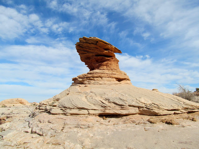 Hoodoo on the rim of the canyon