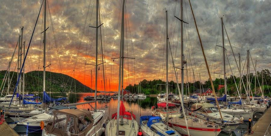 Sommerkveld på Oscarsborg. by John Aavitsland - Transportation Boats