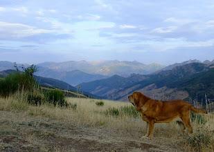 Photo: Europa and wonderful spanish nature