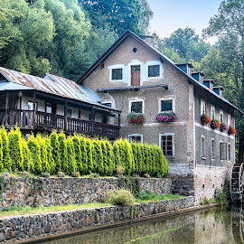 Water Mill II by Martin Namesny - Buildings & Architecture Other Exteriors ( on the river, water, mill, old, building, water wheel, forgotten, witness, historic, river )
