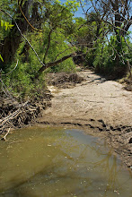 Photo: Dry Slough at Road 30 crossing