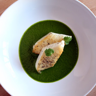 Tilapia with Cilantro Pesto.
