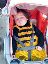 Photo: This little bumble bee had a busy day.