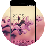 Sakura Theme: Pink Cherry blossom Flower Wallpaper Icon