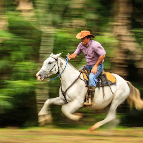 Off to the races by Bill Killillay - Sports & Fitness Other Sports