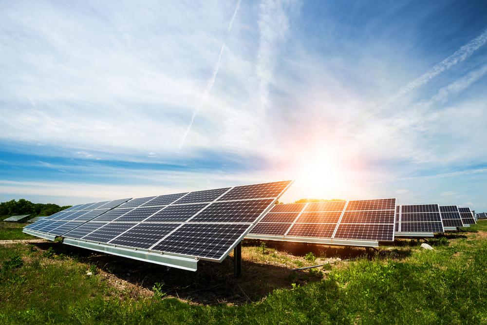Painéis fotovoltaicos são responsáveis por absorver a luz solar que é transformada em energia. (Fonte: Shutterstock)
