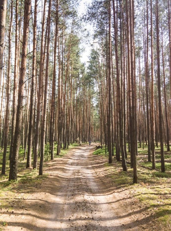 Велопоход Конаково-Тверь